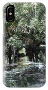 Clear Lithia Springs IPhone Case