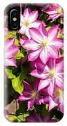 Clematis Vine IPhone Case