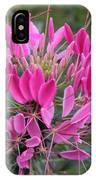 Cleome Spinosa  IPhone Case