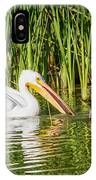Close Call For The Cormorant IPhone Case