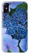 Close-up Of Hydrangea Flowers IPhone Case