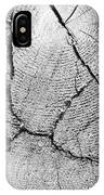 Close Up Of Tree Trunk IPhone Case