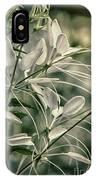 Close Up Wild Flower IPhone Case