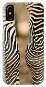 Closeup Of A Grevys Zebras Legs Equus IPhone Case