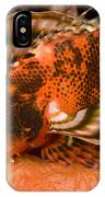 Closeup Of An Ocellated Lionfish IPhone Case