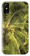 Closeup Of Coconut Palm Trees IPhone Case