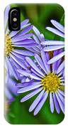 Closeup Of Leafy Bract Asters On Iron Creek Trail In Sawtooth National Wilderness Area-idaho  IPhone Case
