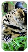 Clouded Leopard In The Grass IPhone Case