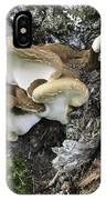 Cluster Of Fungi IPhone Case