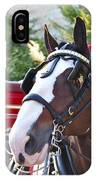Clydesdale At Esp IPhone Case
