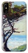 Coast Cypress IPhone Case