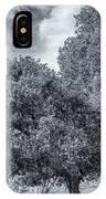 Coast Live Oak Monochrome IPhone Case