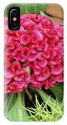 Cockscomb Flower IPhone Case