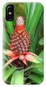 Coconut Plant IPhone Case