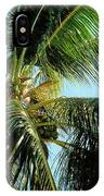 Coconut Tree IPhone Case