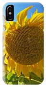 Colby Farms Sunflower Field Newbury Ma Ball Of Fire IPhone Case
