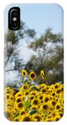 Colby Farms Sunflower Field Newbury Ma Standing Tall IPhone Case