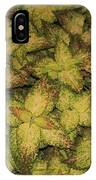 Coleus Plants Pennsylvania Gardens IPhone Case