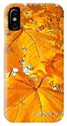 Color Of The Leaves IPhone X Case