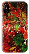 Autumn Foliage  IPhone Case
