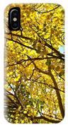 Colorado Aspens In Fall IPhone Case