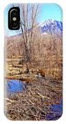 Colorado Beaver Ecosystem IPhone Case