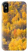 Colorado High Country Autumn Colors IPhone Case