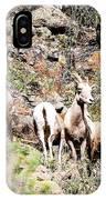 Colorado Mountain Sheep IPhone Case