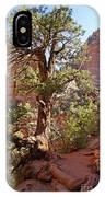 Colorado Pinyon IPhone Case
