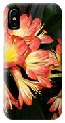 Colorburst IPhone Case