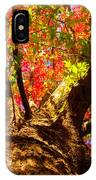 Colorful Autumn Abstract IPhone Case