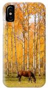 Colorful Autumn High Country Landscape IPhone Case