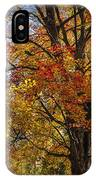Colorful Autumn Tree In Southwest Michigan By Gun Lake IPhone Case
