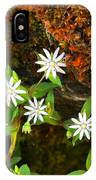 Colorful Chickweed IPhone Case