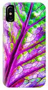 Colorful Coleus Abstract 1 IPhone Case
