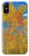 Colorful Colorado Autumn Landscape IPhone Case