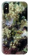 Colorful Coral Reef IPhone Case