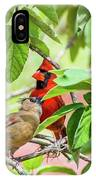 Colorful Couple IPhone Case