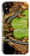 Colorful Cryptic Moth IPhone Case