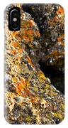 Colorful Lichens IPhone Case