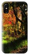 Colorful Maples IPhone Case