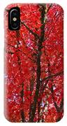 Colorful Red Orange Fall Tree Leaves Art Prints Autumn IPhone Case