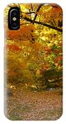 Colorful Rest IPhone Case