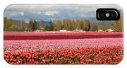 Colorful Skagit Valley Tulip Fields Panorama IPhone Case