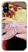 Colorful Starfish IPhone Case