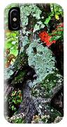 Colorful Stump IPhone Case