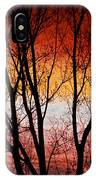 Colorful Tree Branches IPhone Case
