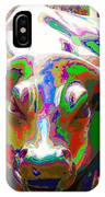 Colorful Wall Street Bull IPhone Case