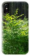 Colors Of A Forest In Vogelsberg IPhone Case