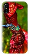 Colors Of Nature - Profile Of A Dragonfly 003 IPhone Case